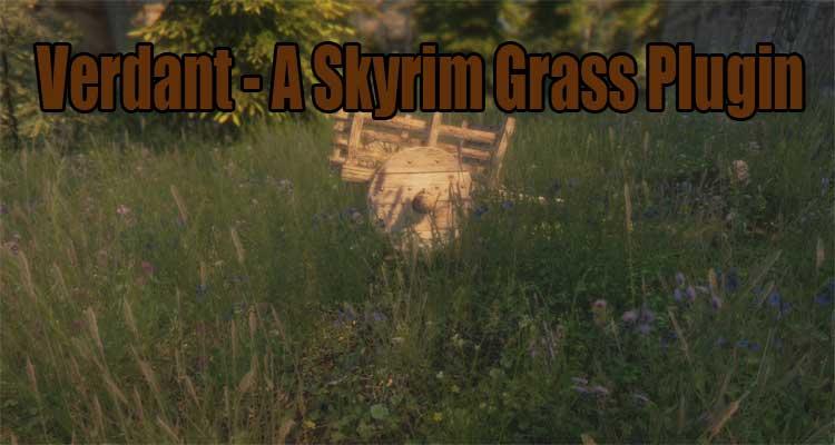 Verdant - A Skyrim Grass Plugin