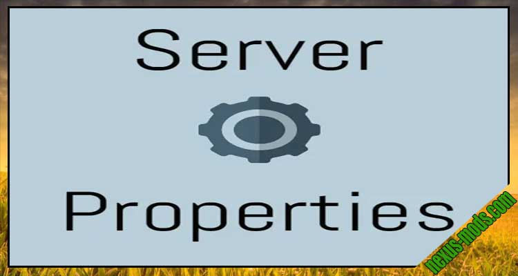 Server.Properties for LAN